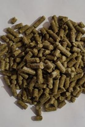 Picture of 14% Protein Hi-Fat Horse Pellet